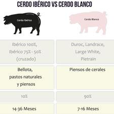 Clasificación del jamón: Diferencias Jamón Ibérico y Jamón Blanco