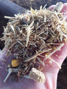 Alimentación Wagyu, piensos elaborados por Finca Santa Rosalia