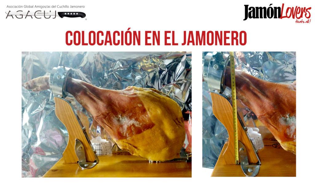 El corte de la paleta: Colocación paletilla en jamonero
