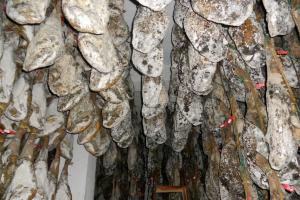 Proceso elaboración Jamón Ibérico: Maduración de las piezas en la bodega