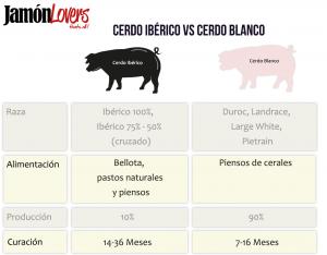 Diferencias entre el cerdo ibérico y el cerdo blanco, jamón