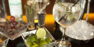 Cata Ginebras y Gin Tonic