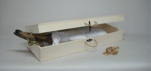 Caja de transporte para jamón ibérico