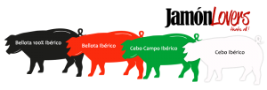 Clasificacion jamón iberico