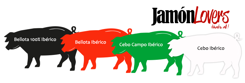 Clasificación Jamón Ibérico