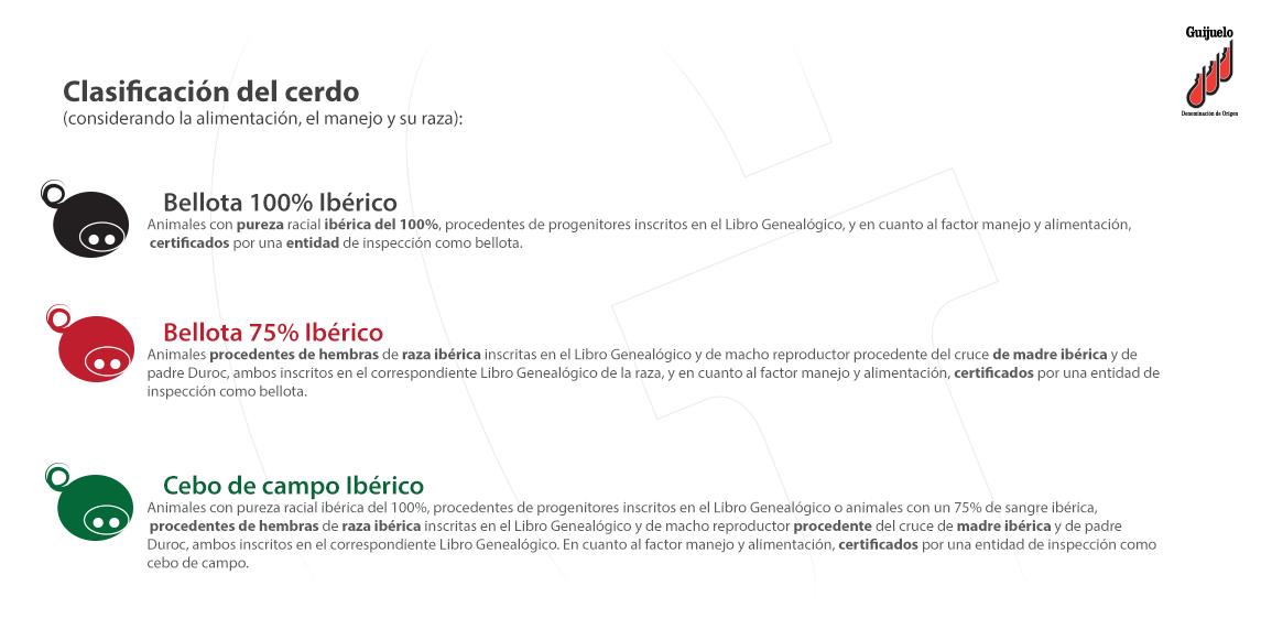Clasificación Jamón Ibérico Denominación Origen Protegida Guijuelo