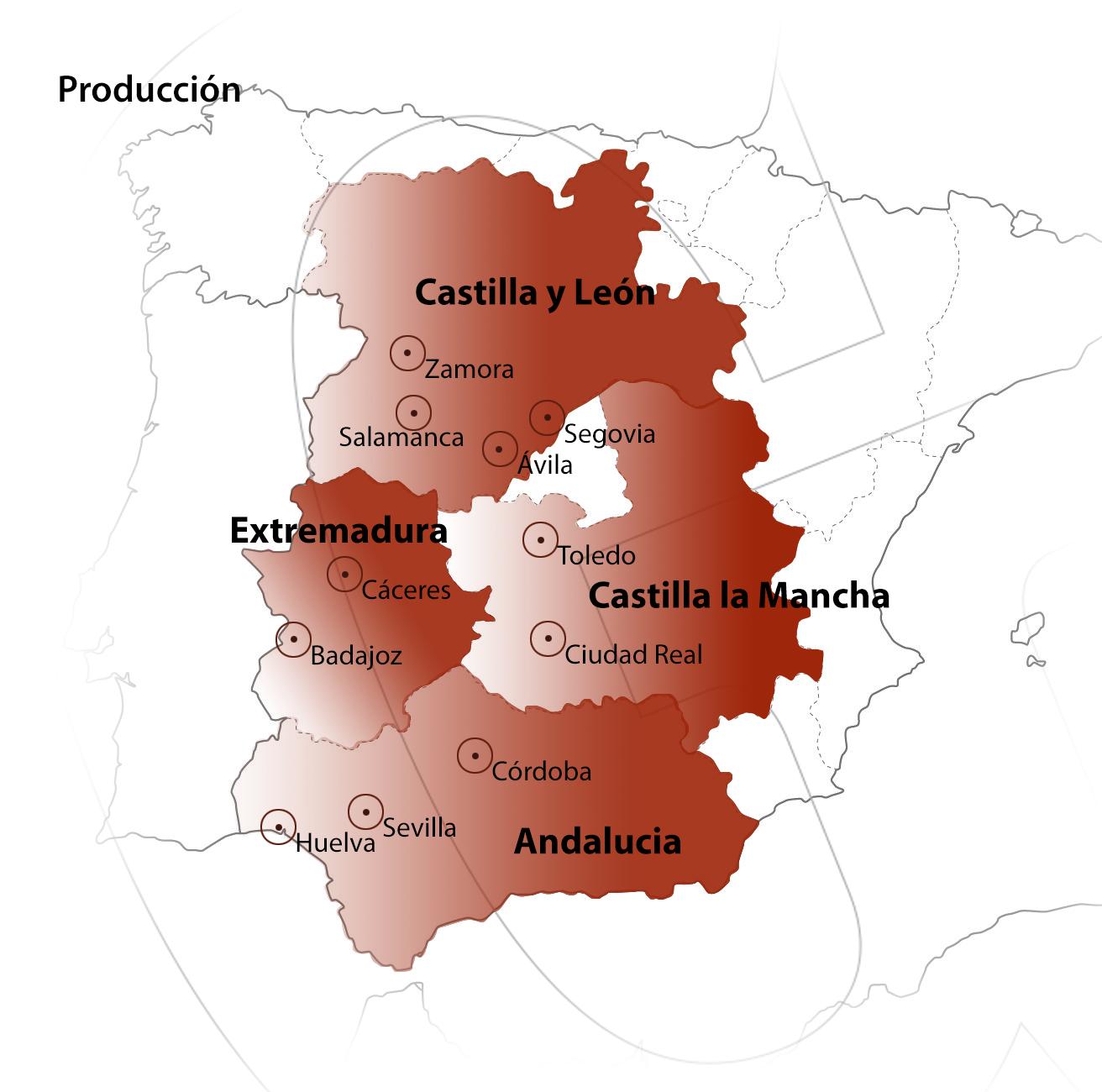 Zonas denominación de origen protegida guijuelo