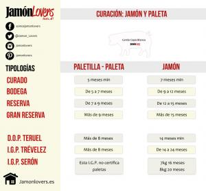 Diferencias entre jamón y paletilla, curación cerdo blanco. Infografía.