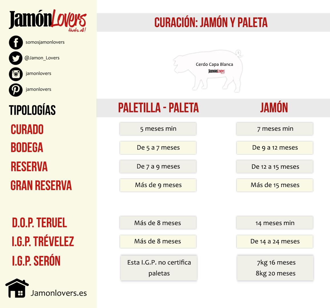 Diferencia entre Jamón y Paletilla. Cerdo blanco.