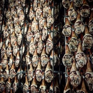 Montanera COVAP, visita a secaderos jamones
