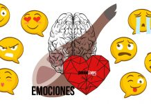 La emociones generadas durante el consumo de jamón