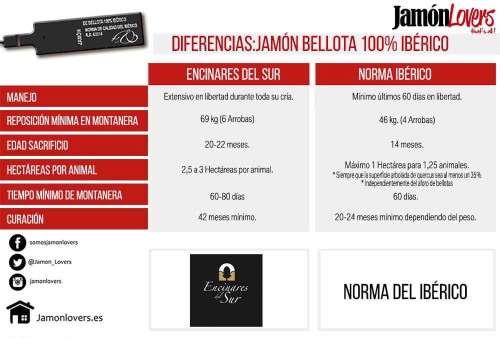 Diferencias entre precinto negro jamón de bellota 100% ibérico. Encinares del Sur vs Norma del Jamón Ibérico