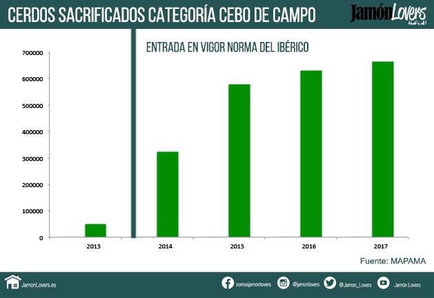 Jamón de cebo de Campo, Evolución cerdos sacrificados para la categoría cebo de campo