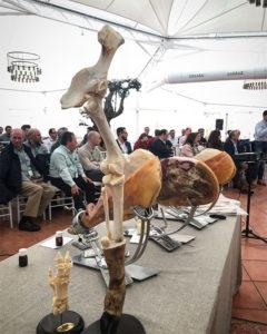 Aspectos anatómicos y de proceso de interés para el corte y degustación de jamón curado