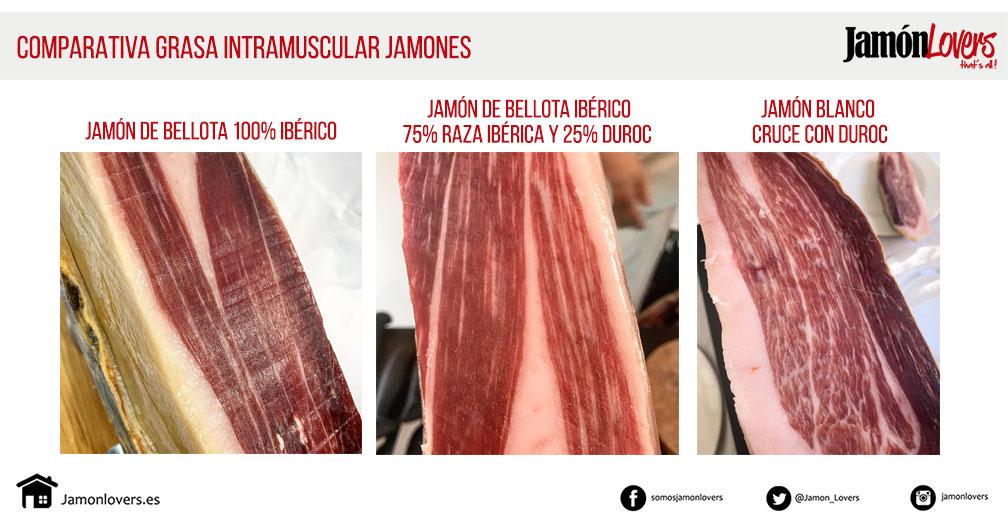Comparativa tipos de grasa en el jamón ibérico