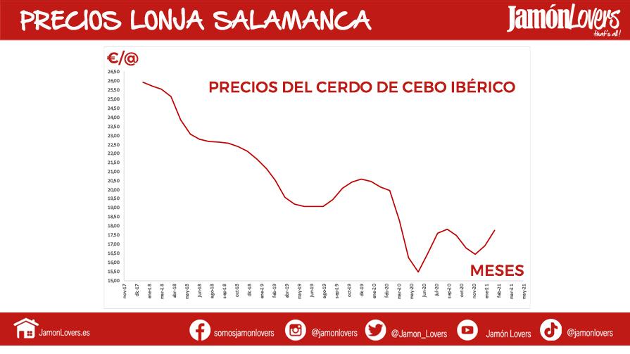 Precios del cedo de Cebo: Lonja Salamanca